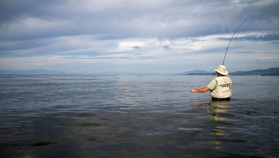 fly fishing for salmon mouth of Chapman Creek, Sunshine Coast. Photo Matthew Lane.