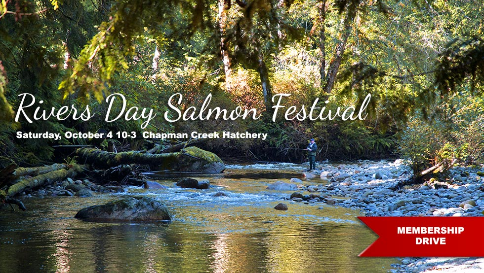 Rivers Day 2014 Oct 4 Chapman Creek Hatchery
