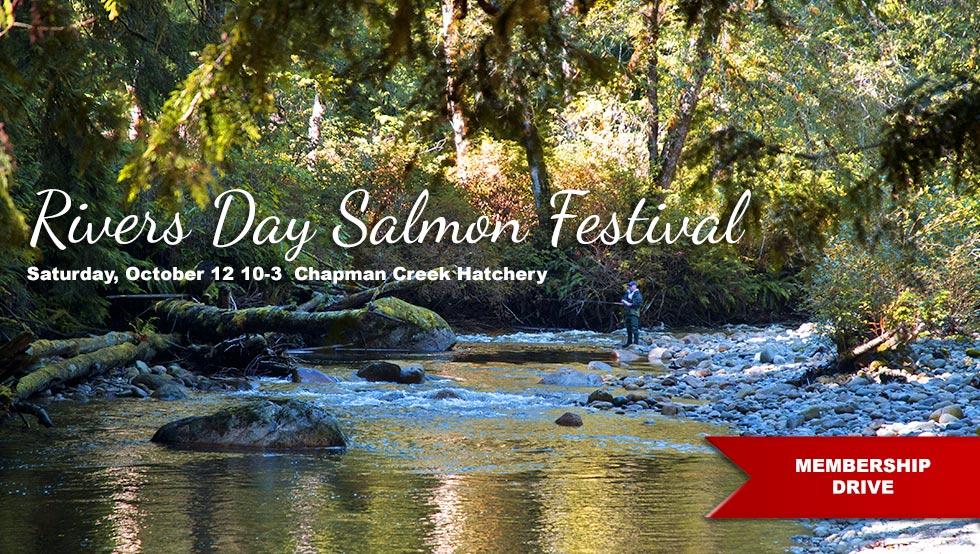 salmon festival chapman hatchery